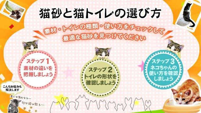 猫砂と猫トイレの選び方