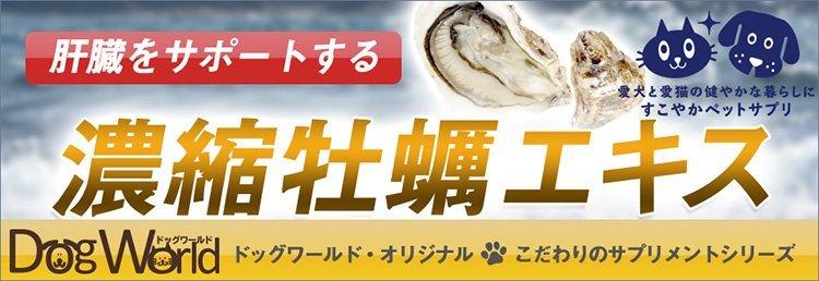 犬猫用濃縮牡蠣エキスサミンサプリメント
