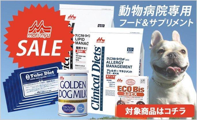 森乳セール