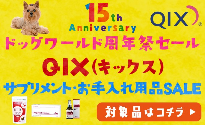 QIX(キックス)