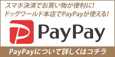PayPay取り扱いスタート