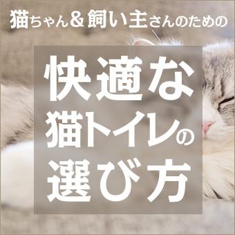 ネコちゃん&飼い主さんのための快適な猫トイレの選び方